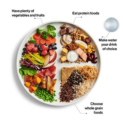 Canada food guide-1.jpg